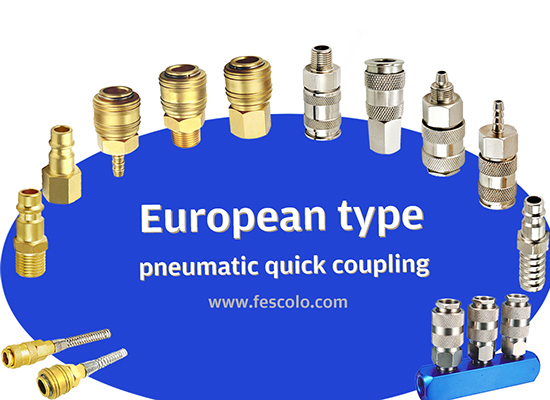 European Type Quick Coupling